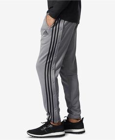 dee8ee209917 13 Best Adidas track pants images