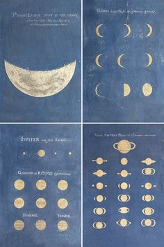 theshipthatflew:  Maria Clara Eimmart (1676-1707). Phase of the Moon, Phases of Venus, Aspect of Jupiter, Aspect of Saturn, late 17th century