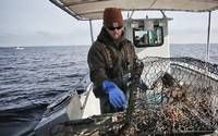 North Carolina: 2017