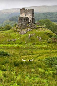 Dolwyddelan Castle in Snowdonia, Wales Stockfoto