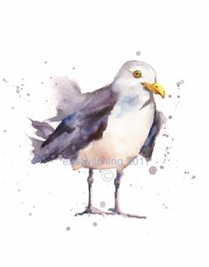 seagull, seagulls, seagull painting, seaside art, beach, coa