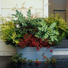 Front Porch Holiday Planter - The simplest of natural touches on your front porch can create a festive welcome for holiday guests. Choose a spacious galvanized pail to house an assortment of fresh cuttings, such as fountain grass, golden Hinoki cypress, and glossy-leaf Oregon grape holly, that will last all season