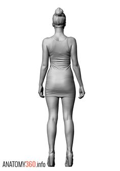 32 best Anatomy | Scans images on Pinterest | Anatomy reference ...