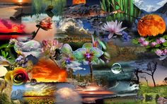 my first attempt at a colllage Mermaid Lagoon, Collages, Polyvore, Painting, Collection, Wall, Design, Women, Collage