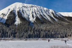 Bluebird day for a snowshoe in the Canadian Rockies #hiking #camping #outdoors #nature #travel #backpacking #adventure #marmot #outdoor #mountains #photography