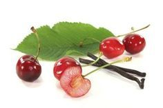 How to Grow a Cherry Tree from Seed or Pit | eHow