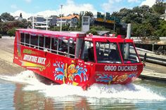 Thrilling Jet Boat Ride on Auckland's Harbour Duck Bus, Capital 1, Amphibious Vehicle, Island Nations, Different Perspectives, Auckland, New Zealand, Cruise, Boat