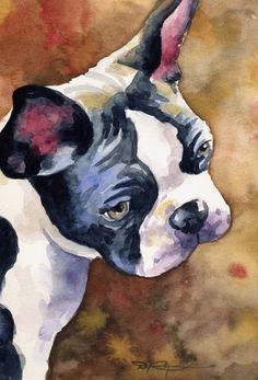 D. J. Rogers (k9artgallery) | WATERCOLOR | Boston Terrier