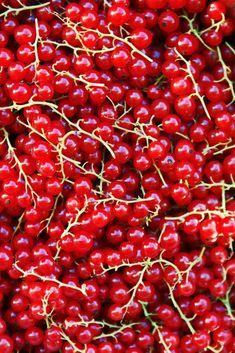 Vad man kan göra med röda vinbär   HungryHeart.se