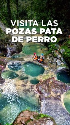 Pozas Pata de Perro, un secreto de Cuetzalan - . Best Places To Travel, Cool Places To Visit, Places To Go, Mexico Destinations, Travel Destinations, Travel Tips, Visit Mexico, Future Travel, Mexico Travel