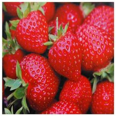 Strawberries Canvas Wall Art ($16) ❤ liked on Polyvore featuring home, home decor, wall art, food, backgrounds, pictures, food and drink, fruit, filler y canvas home decor
