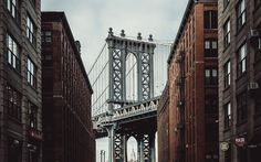 NEW YORK CITY on Behance