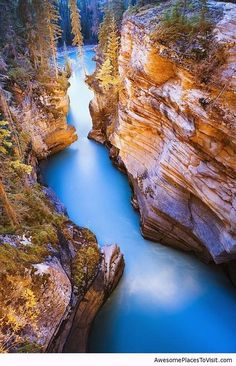 Athabasca Falls, Canada #travel #awesome #places +++Visit http://www.hot-lyts.com/ to see more great images