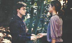 Harry Potter & Hermione Granger- best friends