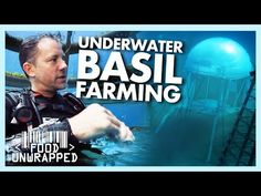 Visit to an Underwater Farm Surprises Matt | Food Unwrapped - YouTube Foods To Avoid, Vitamins And Minerals, Underwater, Youtube, Under The Water, Youtubers