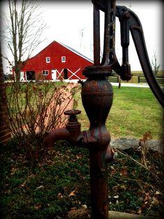 Kentucky Horse Farm in January 2013. #Lizette Fitzpatrick #Lizette Realty www.Lizetterealty.com