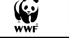 First part of the video campaign for WWF   World Wildlife Foundation