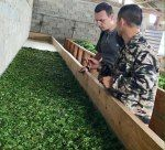 Article about the tea sourcing trip to Feng Qing , Yunnan. Searching for a black tea producer and tea farmers. Success and failure of choosing right tea suppliers. Sharing the experience from the field. Wholesale Tea, Tea Blog, Hotel Reception, Types Of Tea, Success And Failure, One Tree, Farmers, The Locals, Searching