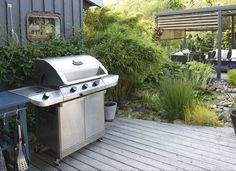 Learn How Keep Your Stainless Steel Grill Sparkling Clean Garden Yard Ideas, Lawn And Garden, Garden Tips, Clean Stainless Steel Grill, Easy Care Plants, Short Plants, Hardy Plants, Garden Care, Outdoor Plants