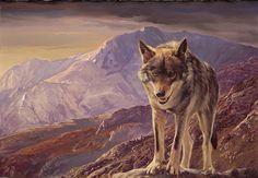 The Last Wolf. Wildlife Art of Manuel Sosa. Paintings and Prints