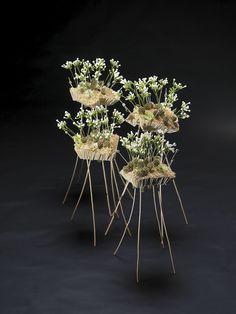 fragile floral design by Pim van den Akker Modern Floral Design, Contemporary Design, Unique Flowers, All Flowers, Arte Floral, Botanical Art, Ikebana, Flower Designs, Art Designs