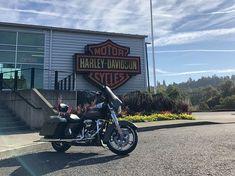 Bill Vasquez' '08 Road California king #harleydavidsonroadkingcustom #harleydavidsonroadkinggirls #harleydavidsonroadkingclassic #harleydavidsonroadkingapehangers #harleydavidsonroadkingwatches #harleydavidsonroadkingbagger 2008 Harley Davidson, Harley Davidson Fatboy, Harley Davidson Street Glide, Harley Davidson Motorcycles, Hd Street Glide, Custom Harleys, Custom Baggers, Road King Classic, Triumph Motorcycles