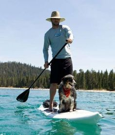 Dog Days of Summer…and Stand Up Paddle Boarding!