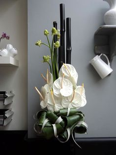 White Anthuriums