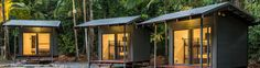 The Safari Lodge offers comfortable and cosy huts in the tropical Daintree rainforest and is the perfect base for your Cape Tribulation adventure. Daintree Rainforest, Cosy, Safari, Tropical, Camping, Australia, Adventure, Outdoor Decor, Home Decor