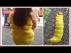 200 pictures of funny coincidence 2015 - funny video fail compilation 2015 january - YouTube