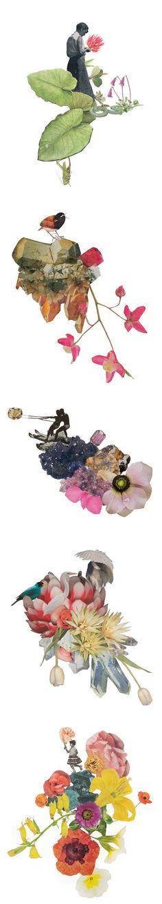 collages by clare celeste borsch