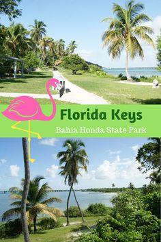 Reisetipps für deinen perfekten Urlaub in Florida. Du reist bald in den Sunshine State und planst einen Trip auf die Florida Key bis hin nach Key West? Ich gebe dir Tipps, für deinen Roadtrip über die Keys. Du suchst wunderschöne Strände? Dann empfehle ich dir einen Abstecher in den Bahia Honda State Park. Mehr Tipps und Empfehlungen zu Restaurants, Hotels und zu den Beaches auf https://aiseetheworld.de/key-west/ Flamingo