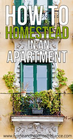How to homestead in an apartment/condo #Prepper