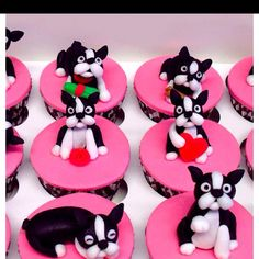 Birthday cupcakes for a friend who owns a Boston Terrier named Buddy Cupcakes Boston, Dog Cupcakes, Birthday Cupcakes, Cupcake Cakes, Birthday Parties, Cup Cakes, Birthday Ideas, Cookie Cakes, Animal Cupcakes