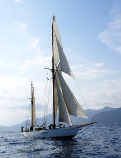 Sailboat byJean Francois Deligeard