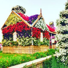 Too pretty and too real. Beautiful flower power at Miracle Garden Dubai. Freshness of flowers brings back memories of all the beautiful places you have been to. Would you like to spend your Off day here? We sure would.. #organiqliving #happy #healthy #sunday #funday #flowers #miracle #garden #fairytale #dubai #organic #colours #trees #plants #green #gogreen #mydubai #instalove #stayhealthy #stayhappy #walk