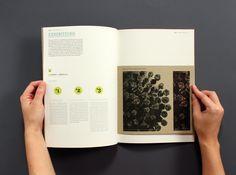 Annual Report by Cathrine Karlsen, via Behance