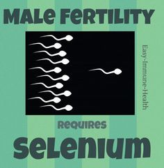 Simple and Inexpensive Solutions to Increase Male Fertility, improve sperm motility. Alternative to male fertility drugs, alternative to IVF Fitness Motivation, Fitness Quotes, Fitness Diet, Fertility Diet, Boost Fertility, Getting Pregnant Tips, Female Infertility, Help Losing Weight, Pregnancy Test