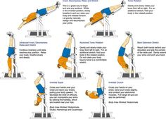 pictures of exercise | ... on the lower back exercises included on the enclosed dvd exercises