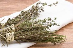 How To Harvest Rosemary Properly – A Quick & Easy Guide Rosemary Plant, How To Dry Rosemary, Rosemary Ideas, How To Dry Basil, Grapevine Wreath, Grape Vines, Harvest, Lawn, Things To Come