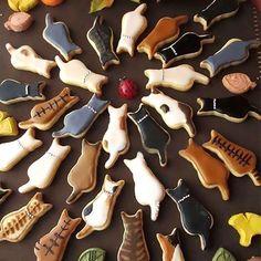 Cat Cookies, Fancy Cookies, Sugar Cookies, Cookies Et Biscuits, Cute Food, Yummy Food, Biscuit Cake, Cute Desserts, Pastry Cake