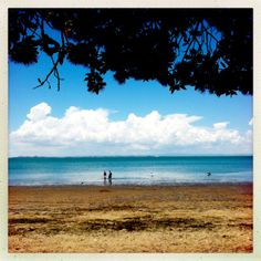 Cornwallis Beach, Auckland December 2013