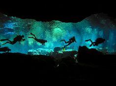 Cozumel Cavern diving - can't wait!