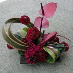 A fun and funky desk arrangement is created with burgundy dahlias, sweet William, pink anthuriums and amazing foliage including stripped to leaves that are rolled and chocolate brown flax leaves looped around the arrangement. This was created for a desk however would be a modern style centerpiece for a wedding or other event!