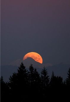 Glacier Peak Moon Moonrise behind Glacier Peak, Washington. Photo Credit : Rick Hawkinson Nikon D100