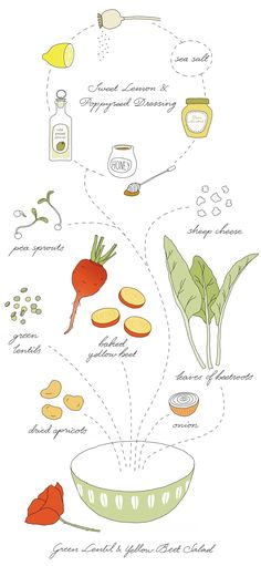 A beautiful illustration demonstrating how to make a Green Lentil & Yellow Beet Salad Via Green Kitchen Stories