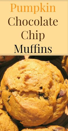 Pumpkin Chocolate Chip Muffins {Sprouted Flour Recipes, Sucanat, Refined Sugar Free, Real Food, Traditional Foods, Kid Friendly Food}