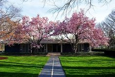 I don't really like the inside of this house, but the outside is beautiful, especially with these blooming trees!
