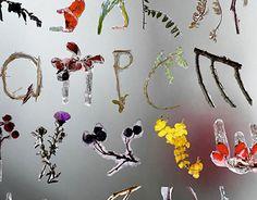 """Check out new work on my @Behance portfolio: """"Дкоративный шрифт """"Ледяная осень"""""""" http://be.net/gallery/38709693/dkorativnyj-shrift-ledjanaja-osen"""