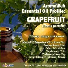 Grapefruit Essential Oil Profile